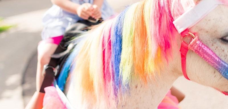 Juegos de cumpleaños temáticos Pony: ideas simples y divertidas