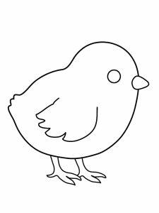 colorear pollitos 23