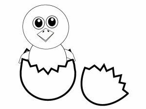 colorear pollito huevos