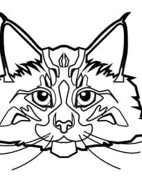 Gatos para imprimir y colorear 64