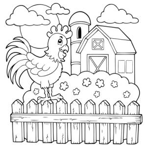 Gallos para imprimir y colorear 30
