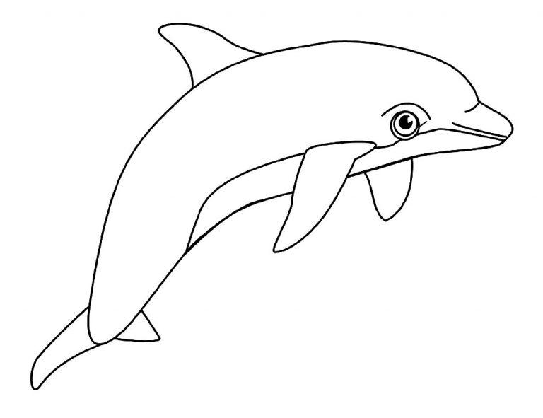 Delfines para imprimir y colorear 3