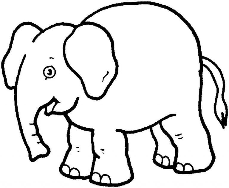 Elefantes para imprimir y colorear 15