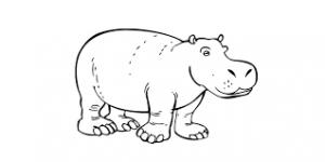 Hipopótamos para colorear 4