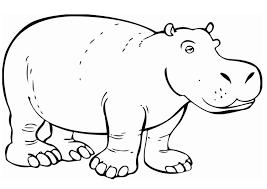 Hipopótamos para colorear 9