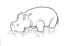 Hipopótamos para colorear 2