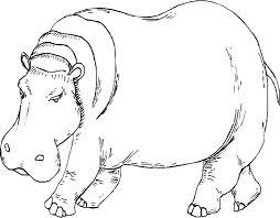 Hipopótamos para colorear 18