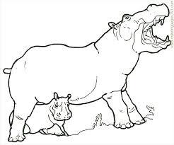 Hipopótamos para colorear 20
