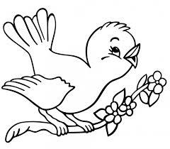 Pájaros para colorear 5