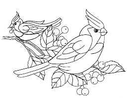 Pájaros para colorear 26