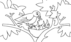 Pájaros para colorear 19