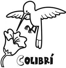 Pájaros para colorear 10