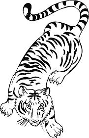 Tigres para colorear 20