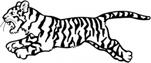 Tigres para colorear 7