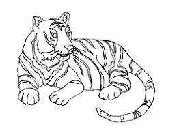 Tigres para colorear 11