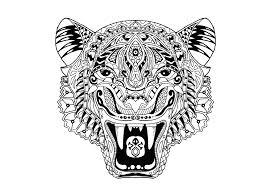Tigres para colorear 13
